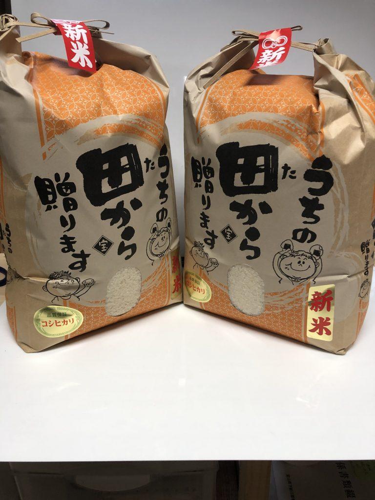 koshihikari0